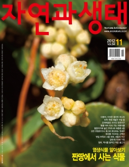'2012 11 Vol.64'   